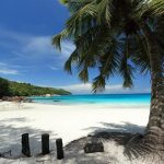 Seychelles Sailing Cruise Beach