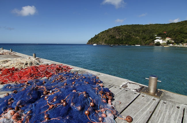 Fishing nets in Martinique