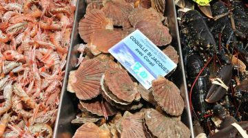 brittany-itinerary-seafood