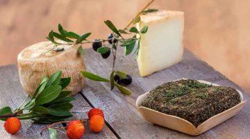 yachtcharter-corsica-goats-cheese
