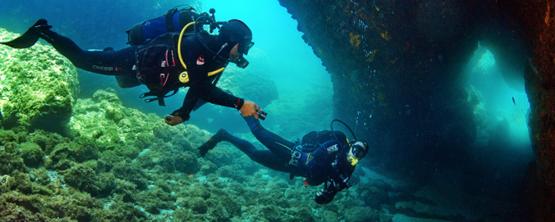 adrina diving